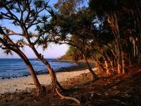 Tea Tree Beach, Noosa National Park, Queensland, Australia.jpg