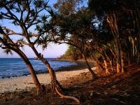 tea-tree-beach-noosa-wallpapers_9350_1600x1200.jpg